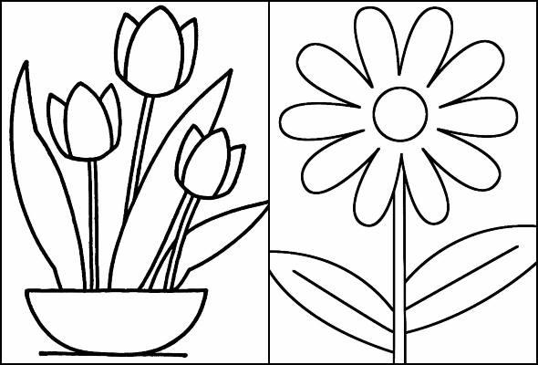 fleurs à peindre