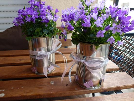Vases avec canettes