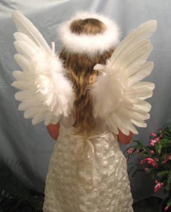 Aile d'ange fantastique