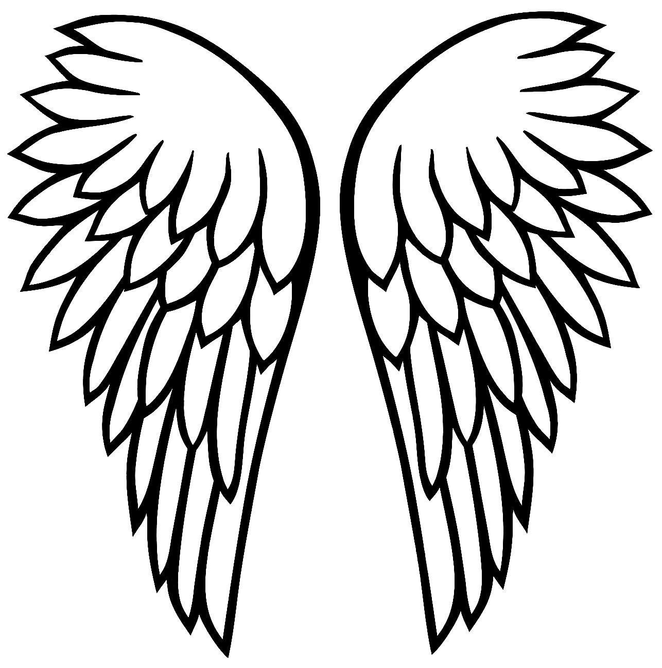 Moules d'aile d'ange
