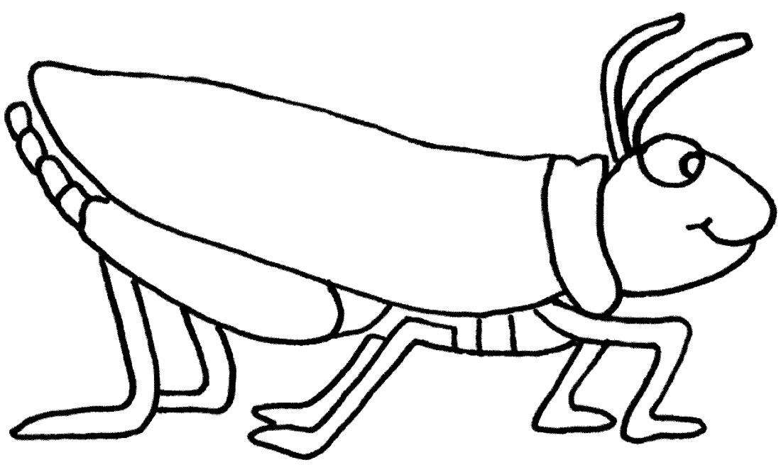 Imagem de inseto para colorir