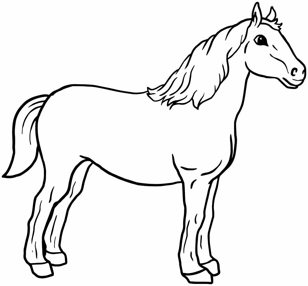 Molde de cavalo para imprimir