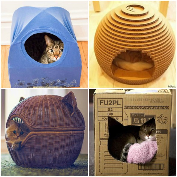 comment faire des maisons et des abris pour chats