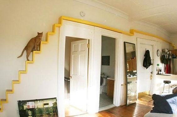 escaliers pour chats