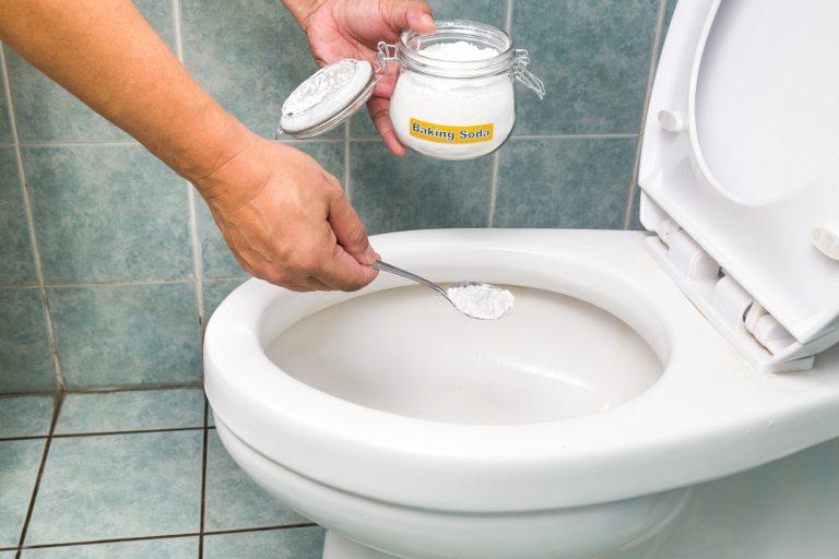Mettre le bicarbonate de sodium à la main dans la cuvette des toilettes blanches