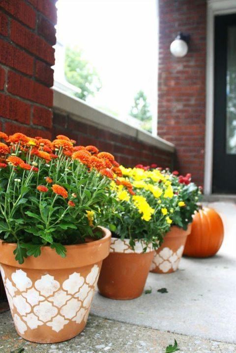 plantes en pot décorées avec la technique du pochoir
